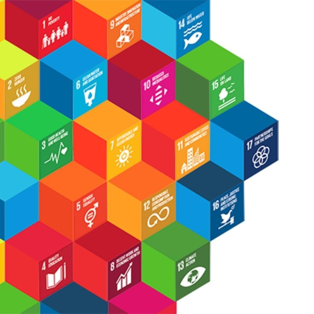 Sürdürülebilirlik ve SDG Yol Haritaları