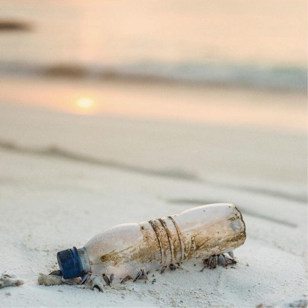 Yeni Plastik Ekonomisi